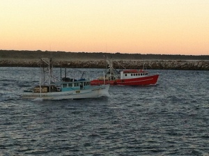 night fleet fishing Yamba
