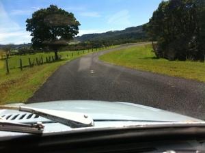 The road to Darigo