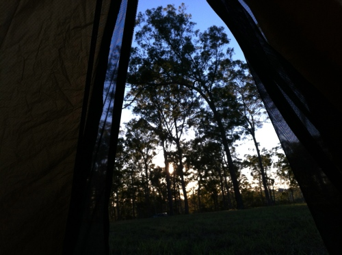 the view from the tent at avondale tavern