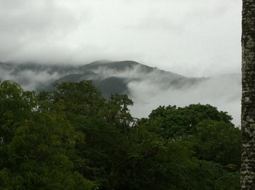 cloud mist @ karnak
