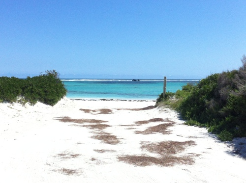 the view from the camp site to the beach at lancelin- awesome